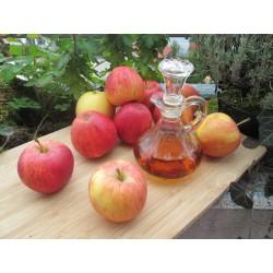0,5 l Bio Jablečný ocet přírodní nefiltrovaný