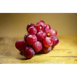 0,5 l Bio ocet z červeného vína