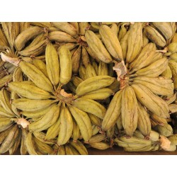100 g Mini banán sušený BIO, Srí Lanka