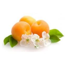 40 g BIO tyčinka meruňková