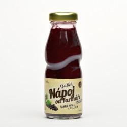 0,2 l Gabík Černý rybíz s celerem smoothie Nápoj od farmáře