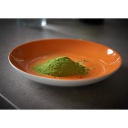 100 g Moringa olejodárná BIO