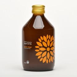Vigo Kombucha Acerola + Zázvor Organic Live Tea 300 ml