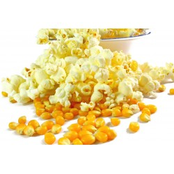 100 g Kukuřice na Popcorn